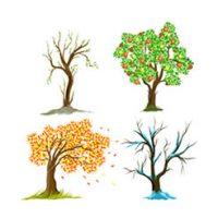 Verzameling: kleurplaten van seizoenen en jaargetijden