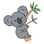 Koalaberen kleurplaat