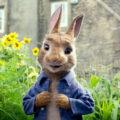Pieter Konijn (Peter Rabbit Movie) kleurplaten