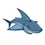 Haaien kleurplaat