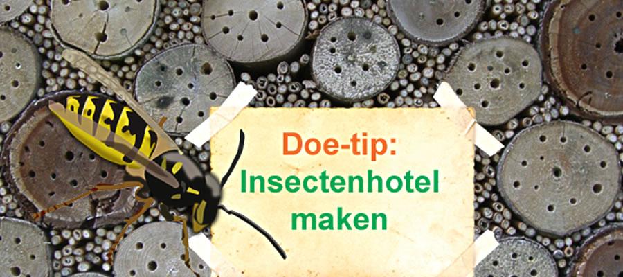 Leuk Voor Kids Een Insectenhotel Bouwen