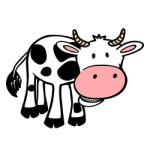 Koeien kleurplaat