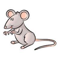 muizen kleurplaten leuk voor