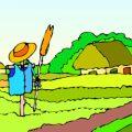 Op de boerderij kleurplaten
