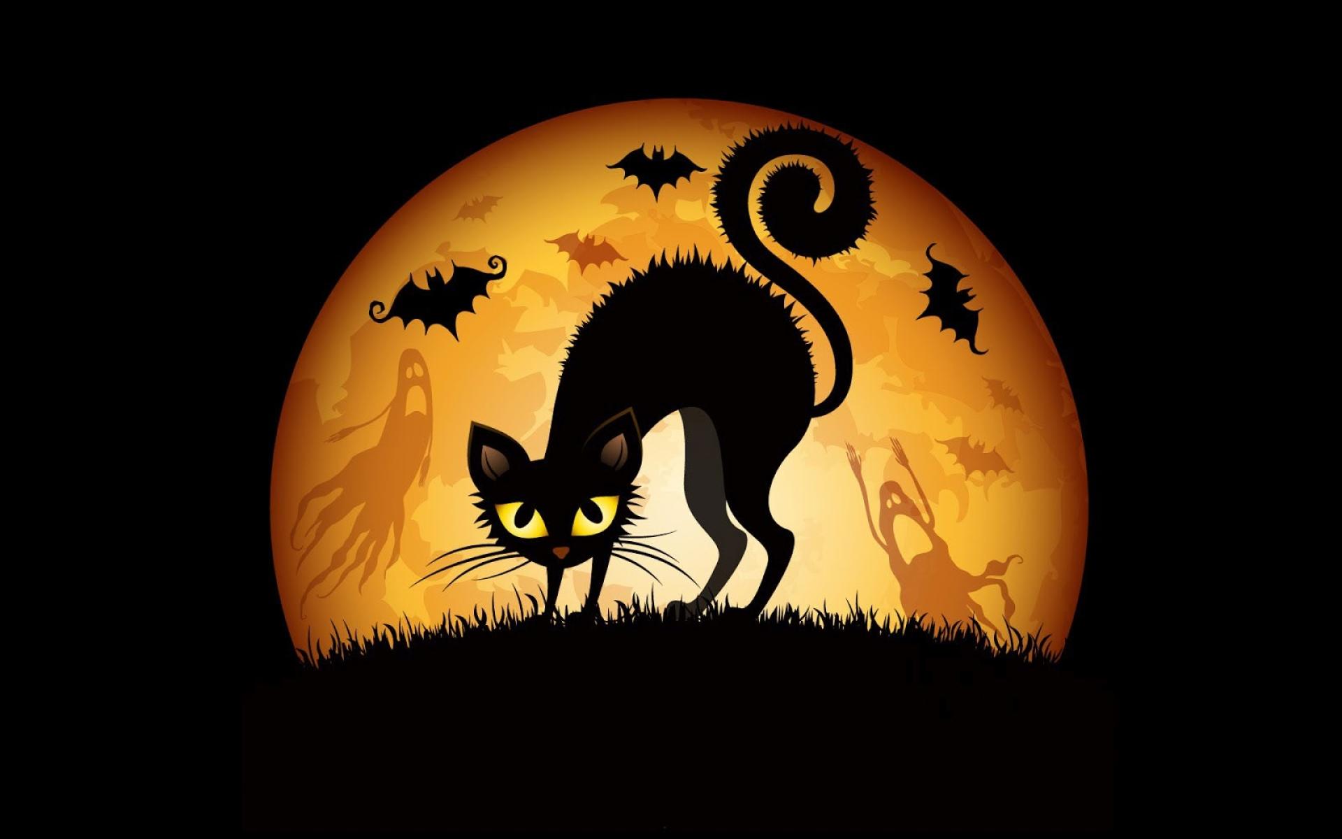 download wallpaper: Halloween kat wallpaper