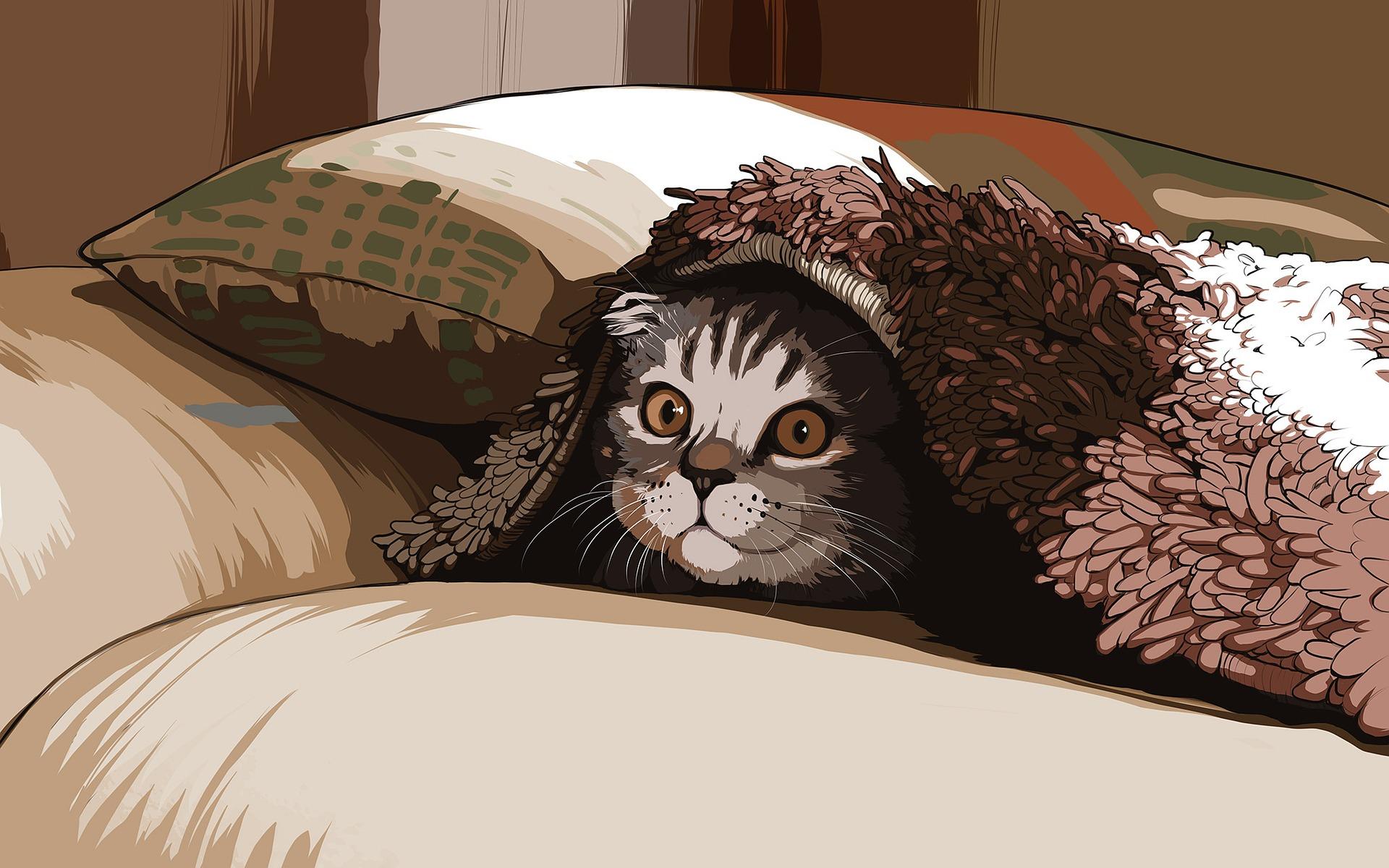 download wallpaper: kat onder een kleed wallpaper