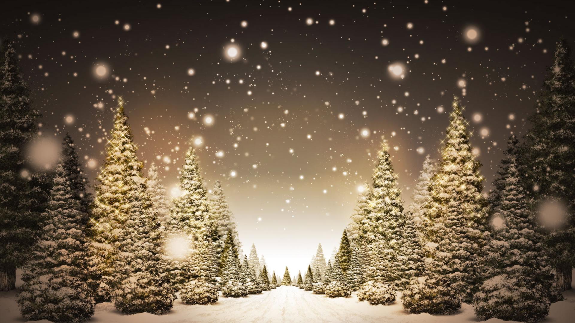 bekijk wallpaper: kerstbomen kleurplaat